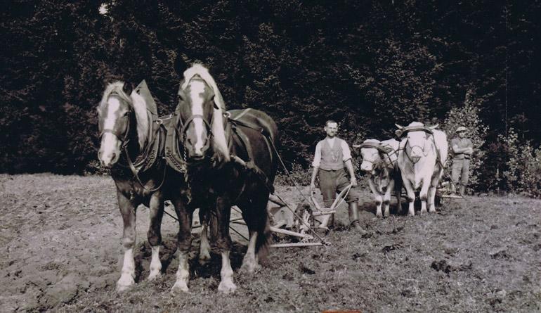 Landwirtschaft - Historisches Rossbach